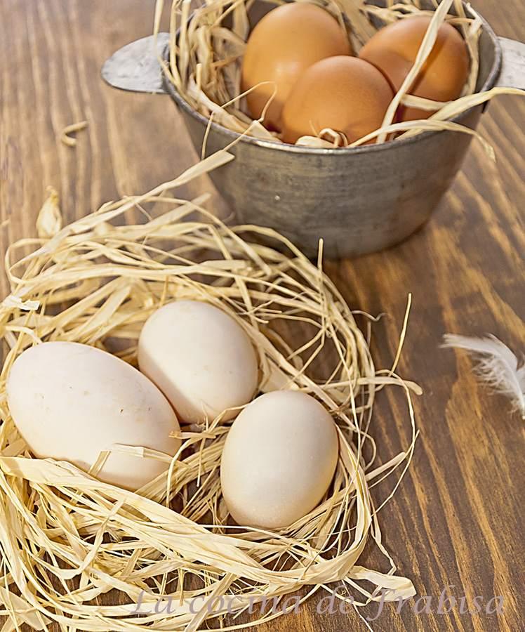 huevos. frabisa